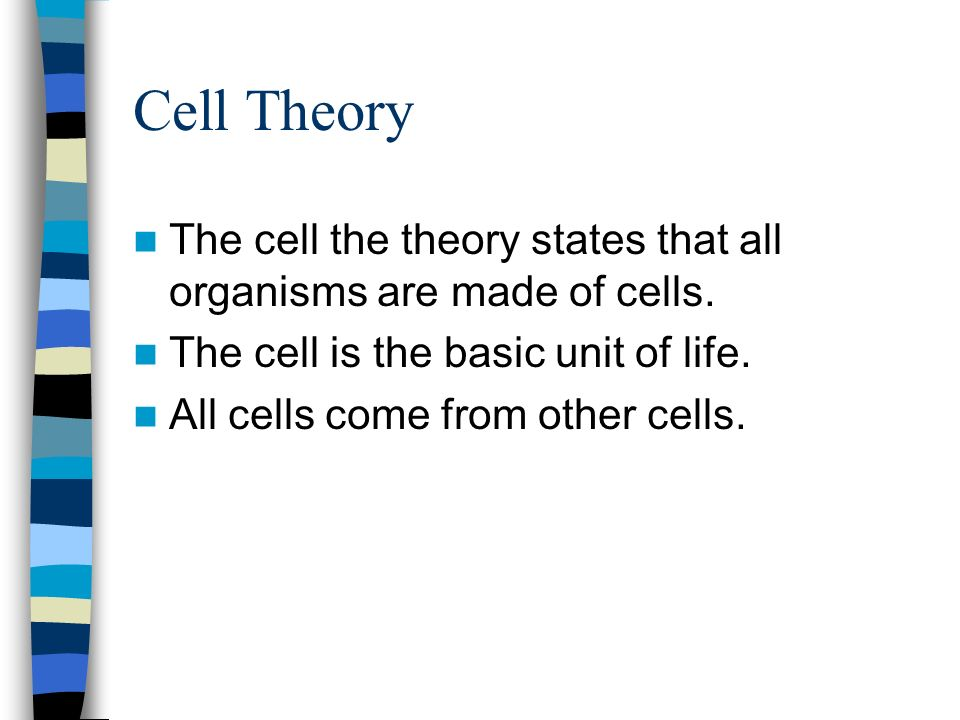 Cell Theory The cell the theory states that all organisms are made of cells. The cell is the basic unit of life.