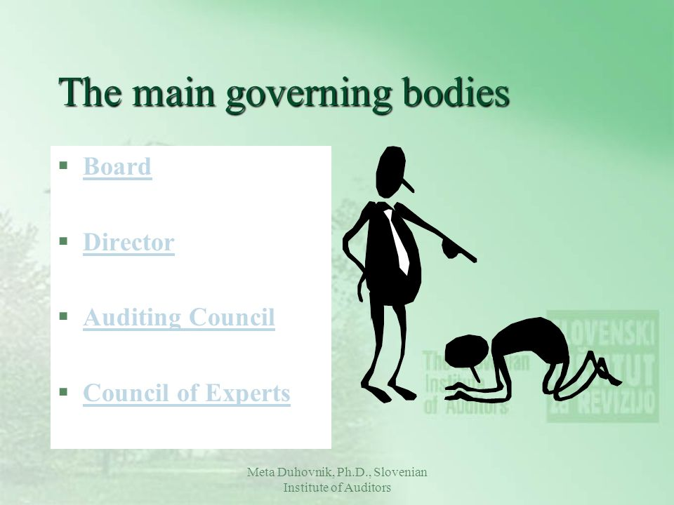 The main governing bodies