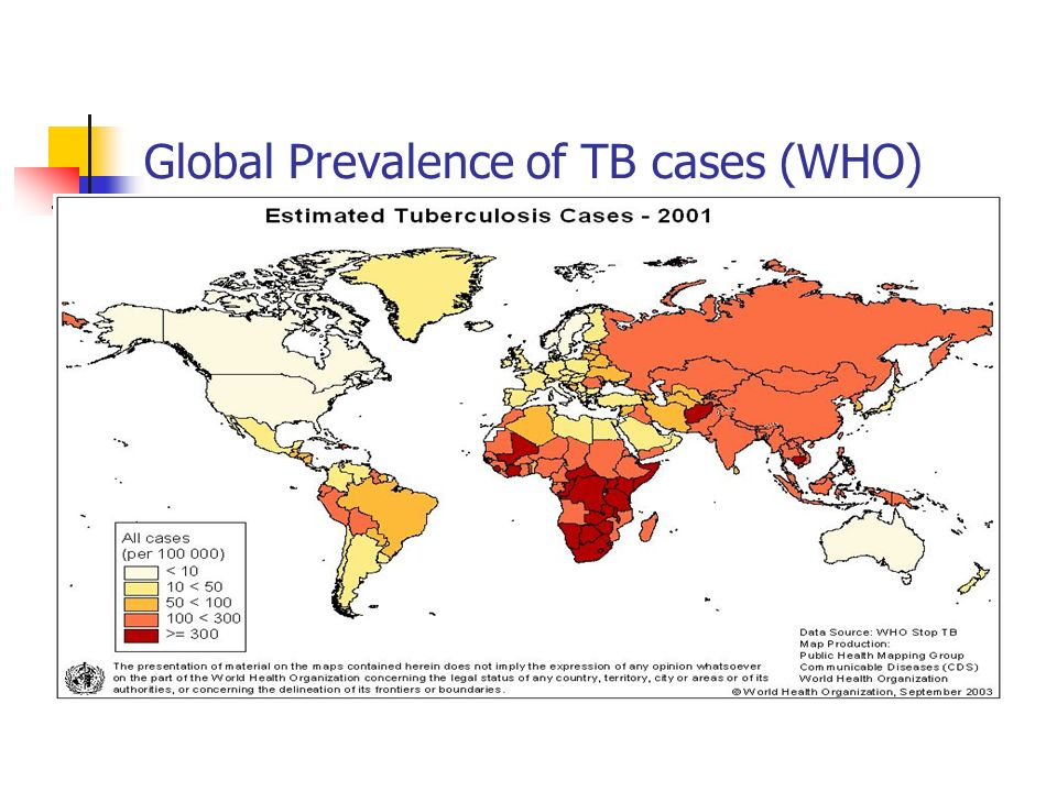 Global Prevalence of TB cases (WHO)