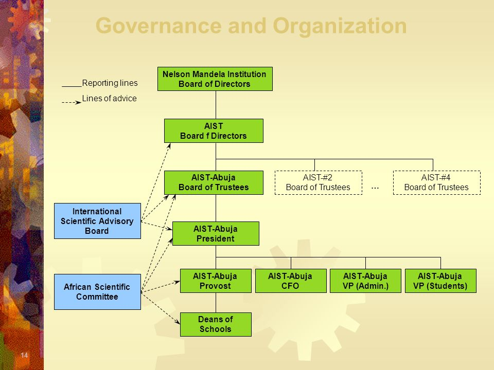 Governance and Organization