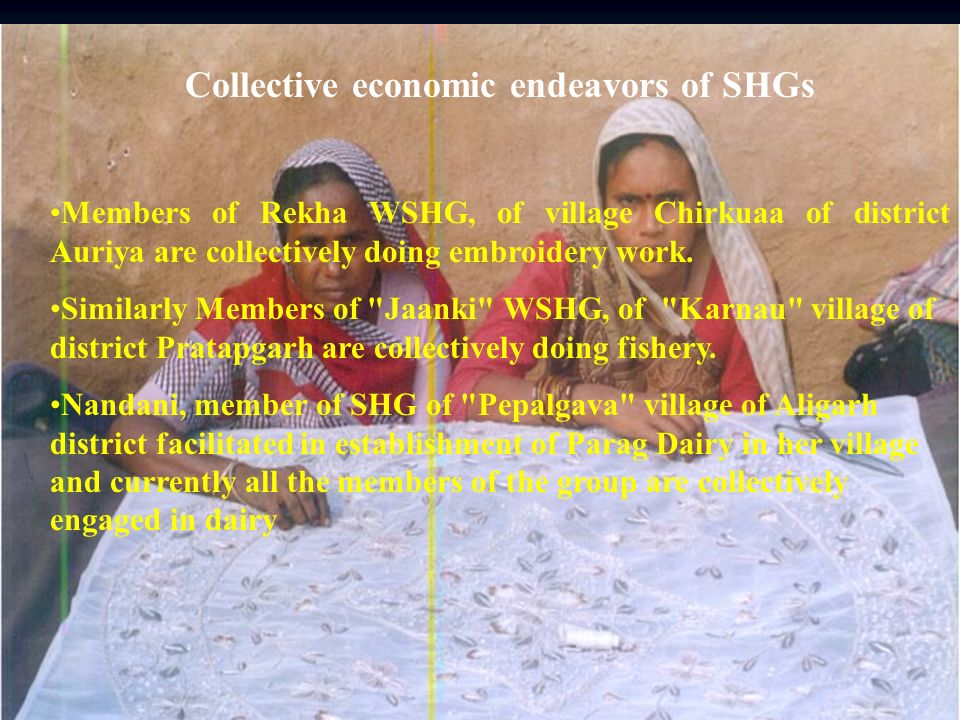 Collective economic endeavors of SHGs