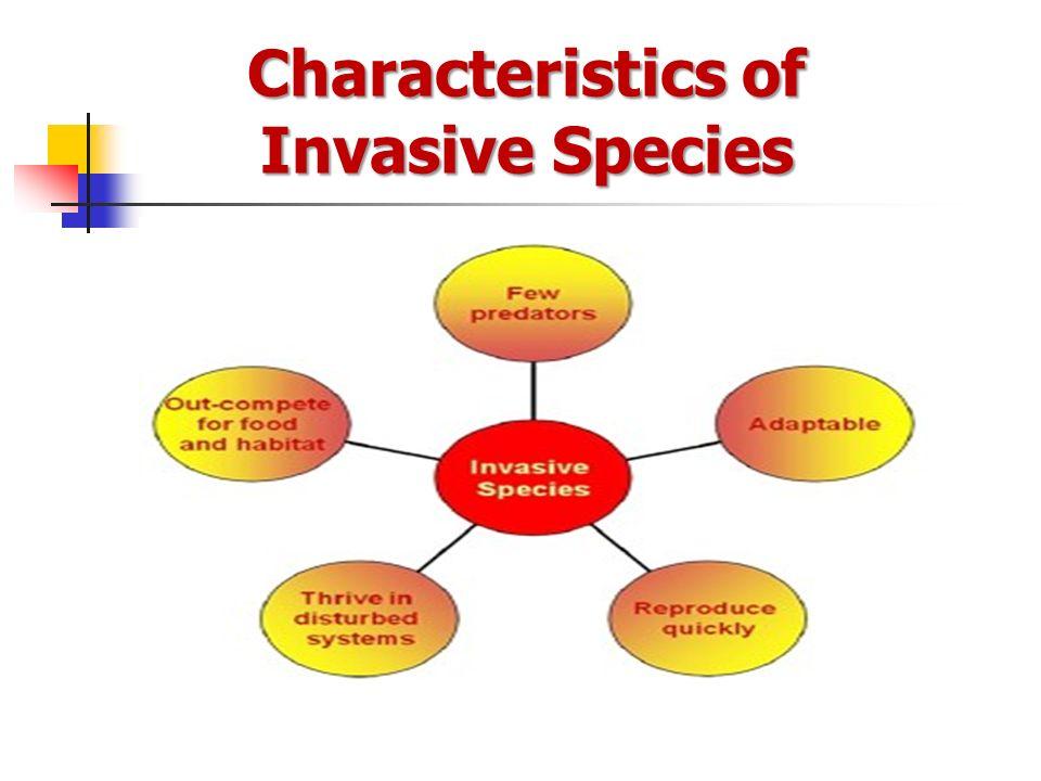 2016 INVASIVE SPECIES (B&C) - ppt video online download