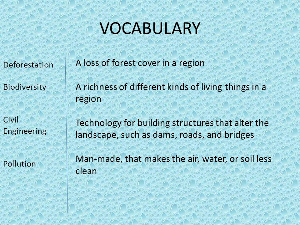 VOCABULARY A loss of forest cover in a region
