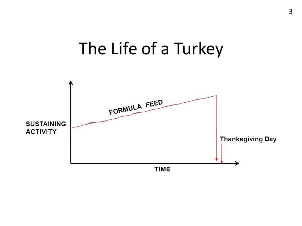 The Life of a Turkey FORMULA FEED SUSTAINING ACTIVITY Thanksgiving Day
