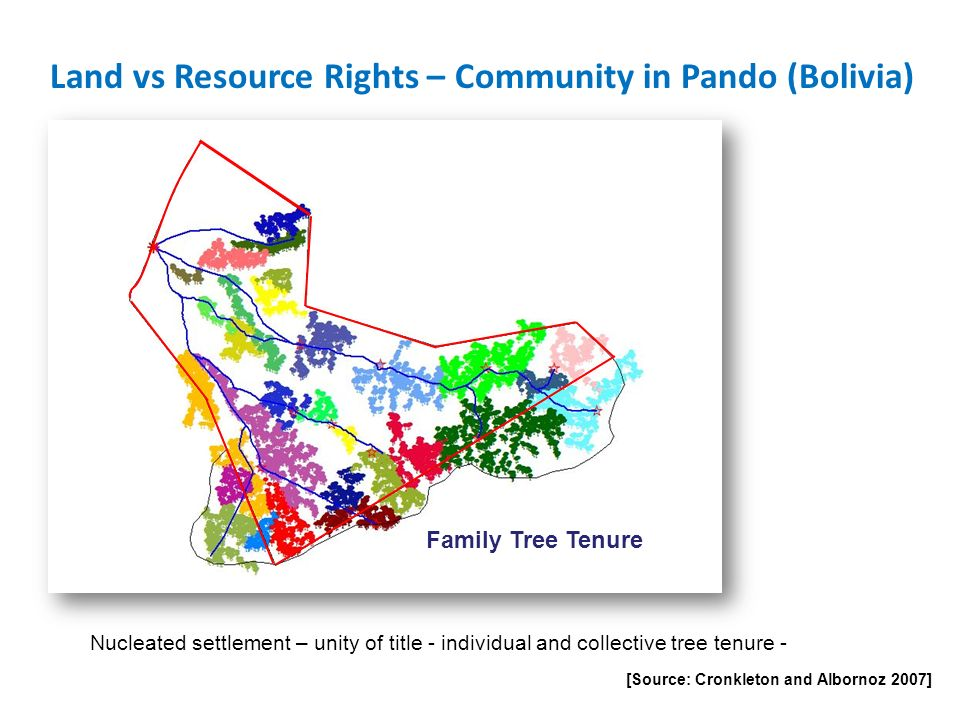 Land vs Resource Rights – Community in Pando (Bolivia)