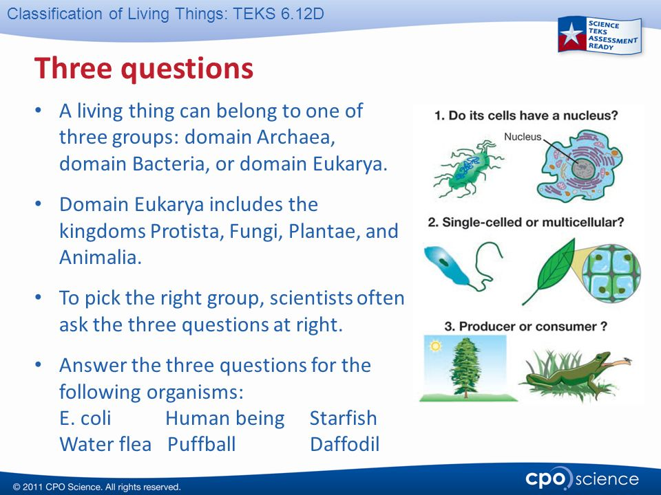 To The Teacher This Cpo Science Powerpoint Presentation Is Designed