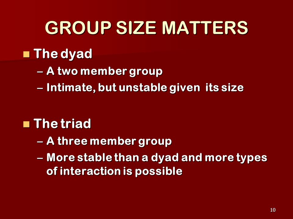 GROUP SIZE MATTERS The dyad The triad A two member group