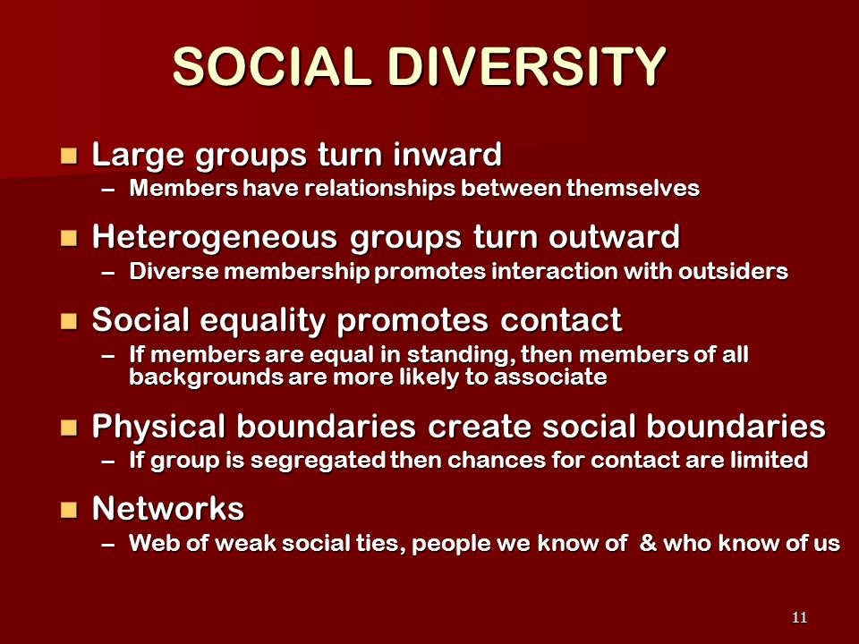 SOCIAL DIVERSITY Large groups turn inward
