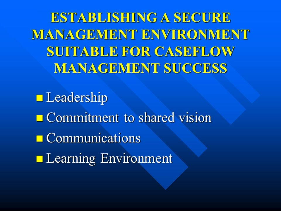 ESTABLISHING A SECURE MANAGEMENT ENVIRONMENT SUITABLE FOR CASEFLOW MANAGEMENT SUCCESS