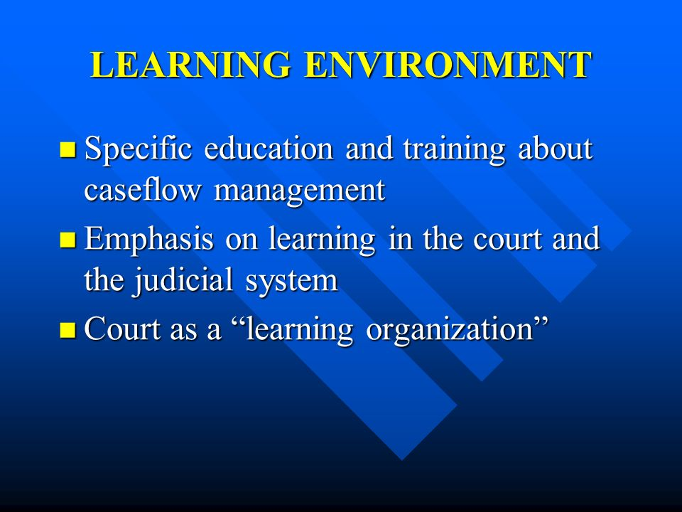 LEARNING ENVIRONMENT Specific education and training about caseflow management. Emphasis on learning in the court and the judicial system.