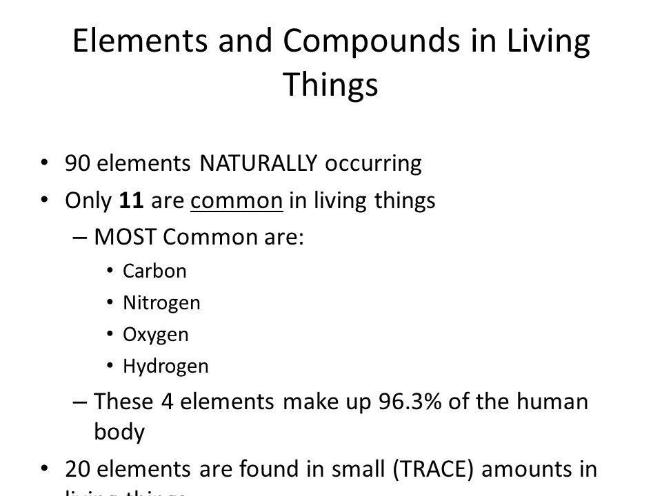 What are the four most common elements that make up living things