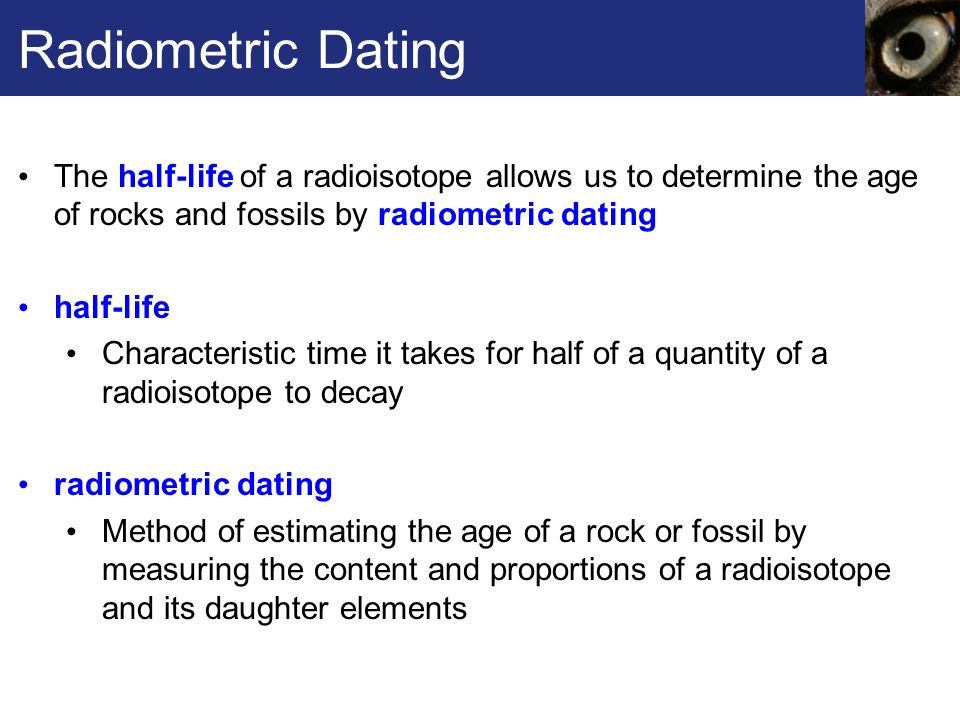 radiometric dating allows us to determine
