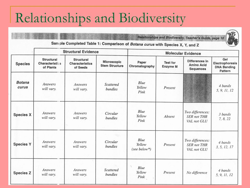 relationship and biodiversity lab answer