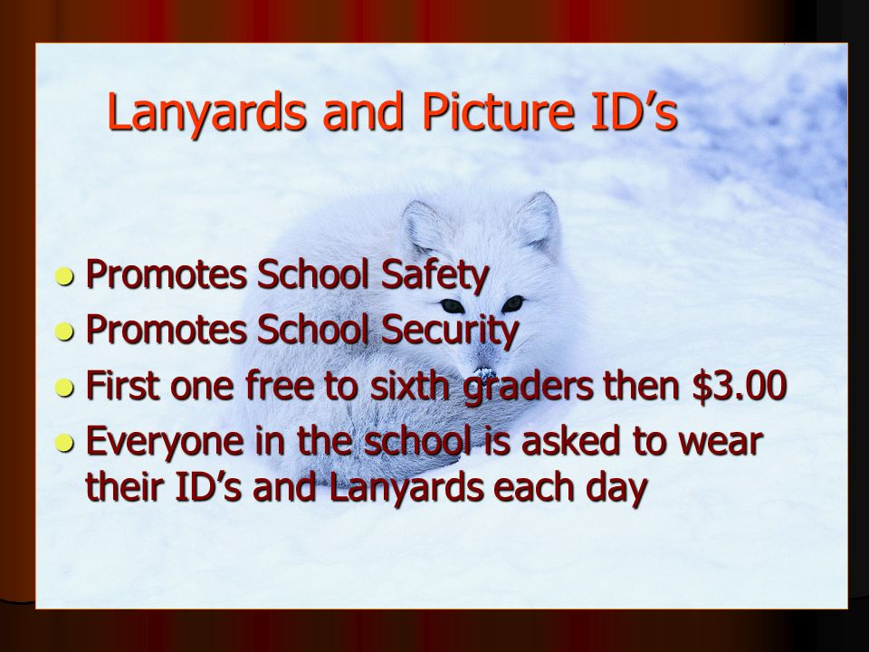 Lanyards and Picture ID's