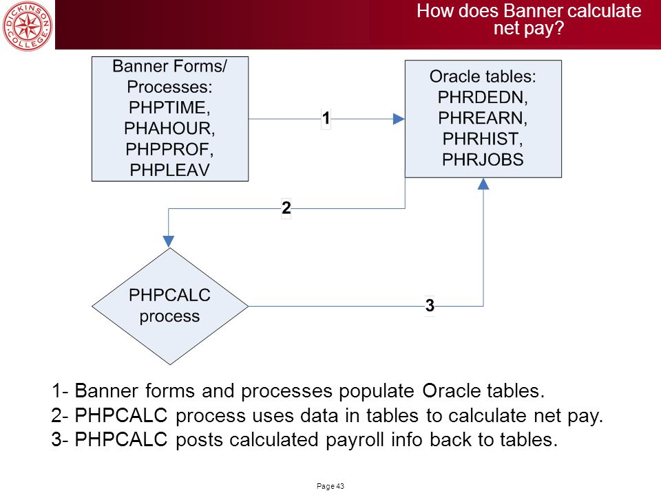 How does Banner calculate net pay