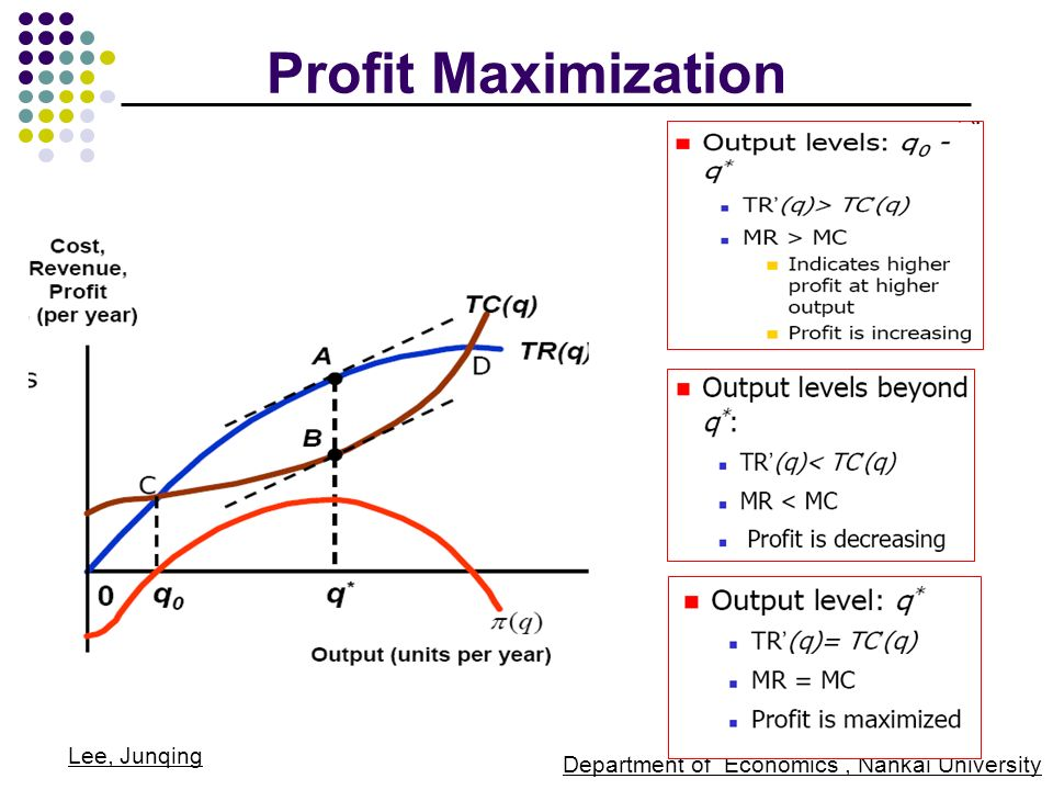 13 profit maximization