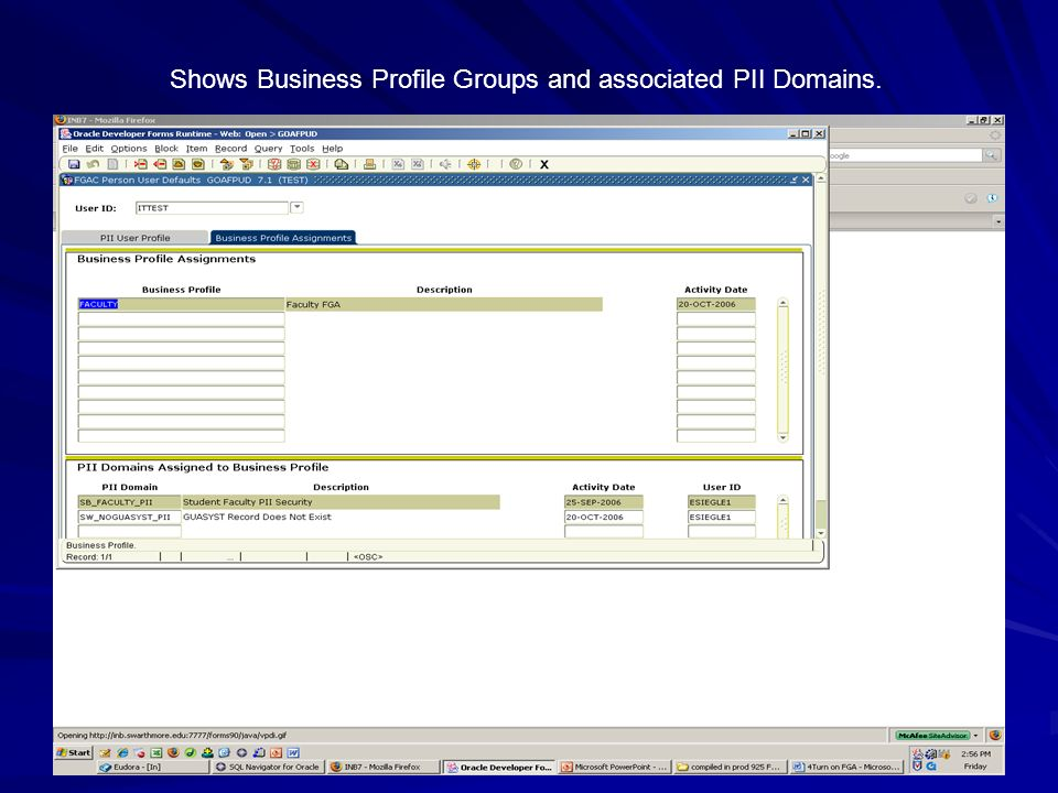 Shows Business Profile Groups and associated PII Domains.