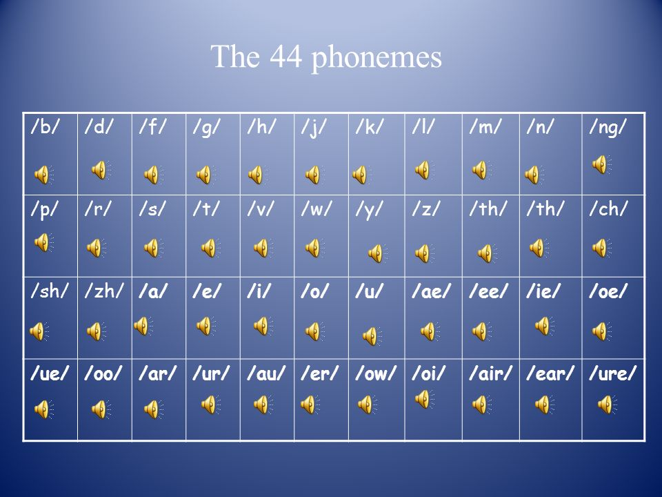 The 44 phonemes /b/ /d/ /f/ /g/ /h/ /j/ /k/ /l/ /m/ /n/ /ng/ /p/ /r/