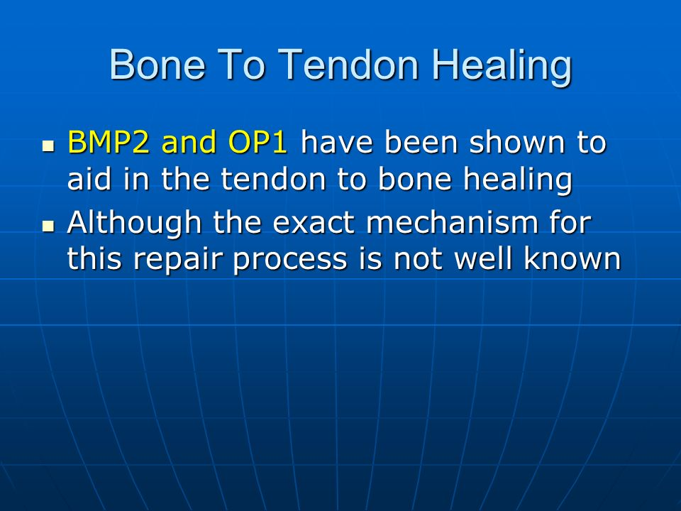 Bone To Tendon Healing BMP2 and OP1 have been shown to aid in the tendon to bone healing.