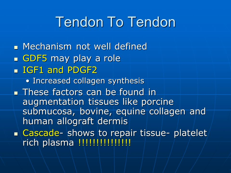 Tendon To Tendon Mechanism not well defined GDF5 may play a role