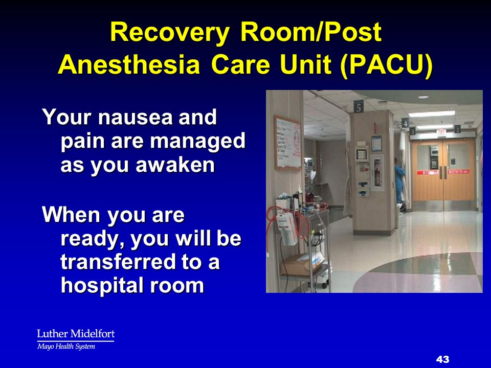Recovery Room/Post Anesthesia Care Unit (PACU)