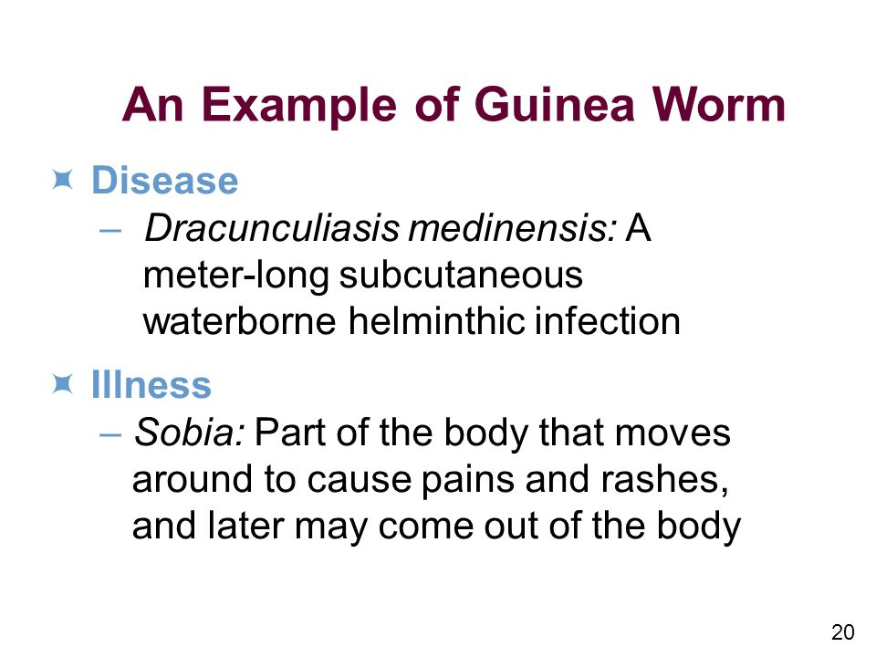 An Example of Guinea Worm