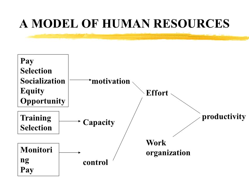 A MODEL OF HUMAN RESOURCES