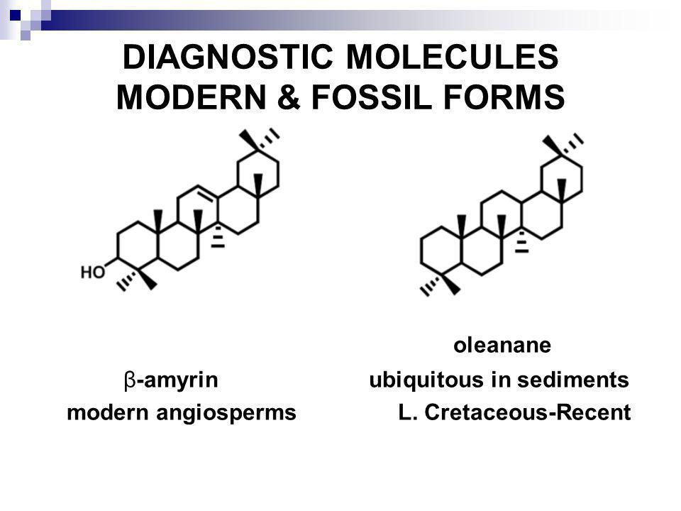 DIAGNOSTIC MOLECULES MODERN & FOSSIL FORMS