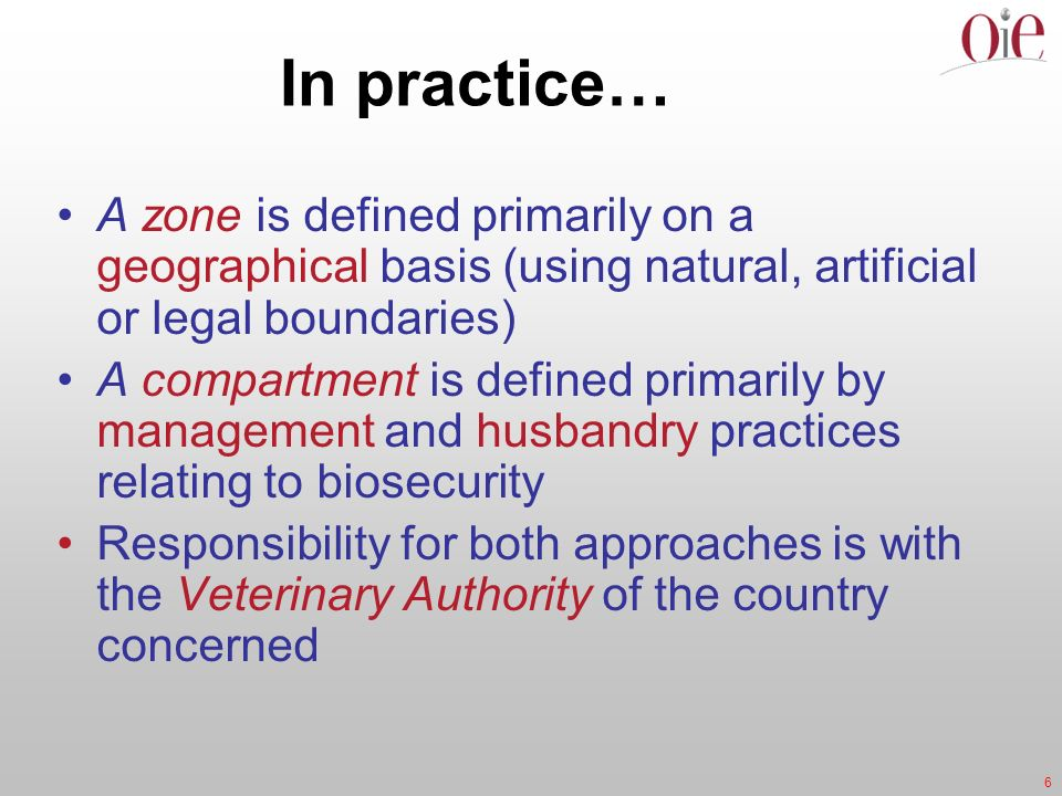 In practice… A zone is defined primarily on a geographical basis (using natural, artificial or legal boundaries)