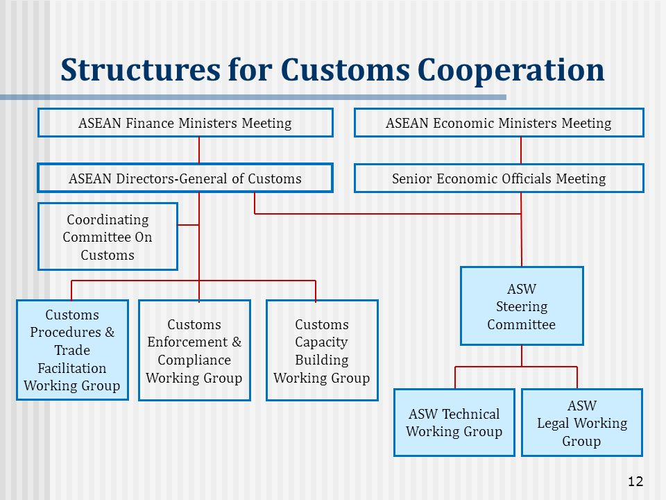 Structures for Customs Cooperation