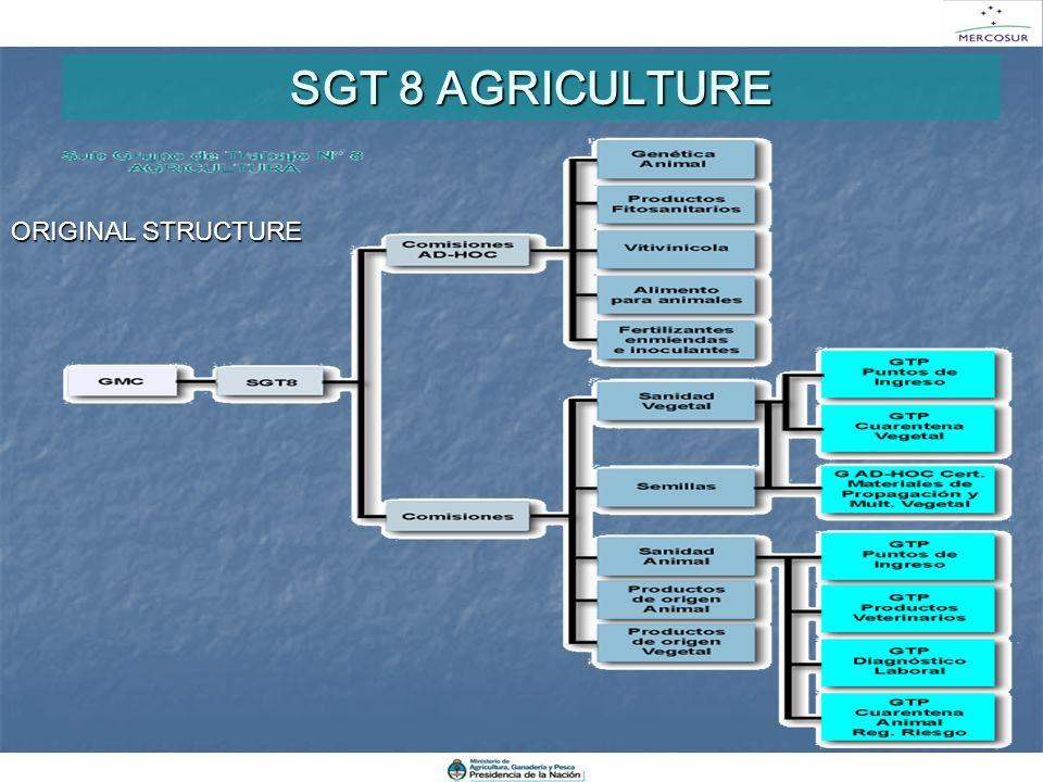 SGT 8 AGRICULTURE ORIGINAL STRUCTURE