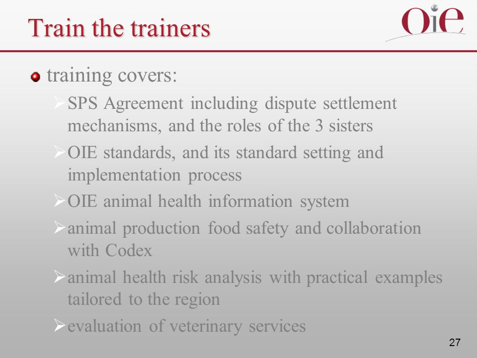 Train the trainers training covers: