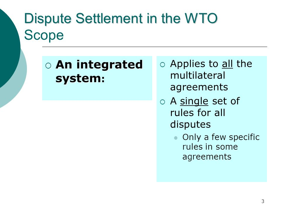 Dispute Settlement in the WTO Scope