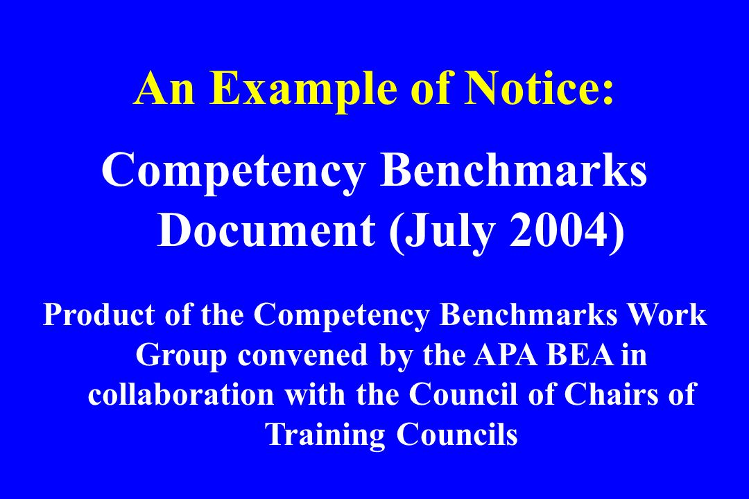 Competency Benchmarks Document (July 2004)