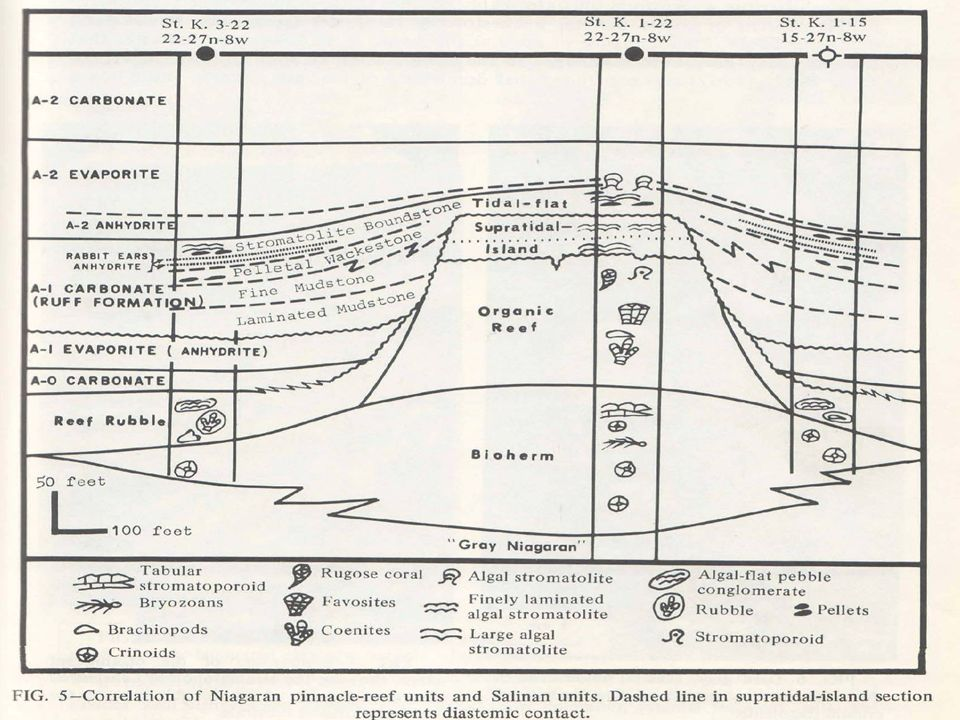 Repeat of Northern Michigan Silurian reef model with depositional environments for reference to interpretation.