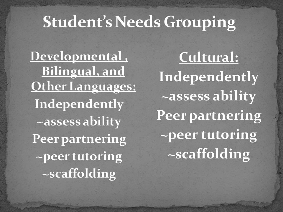 Student's Needs Grouping