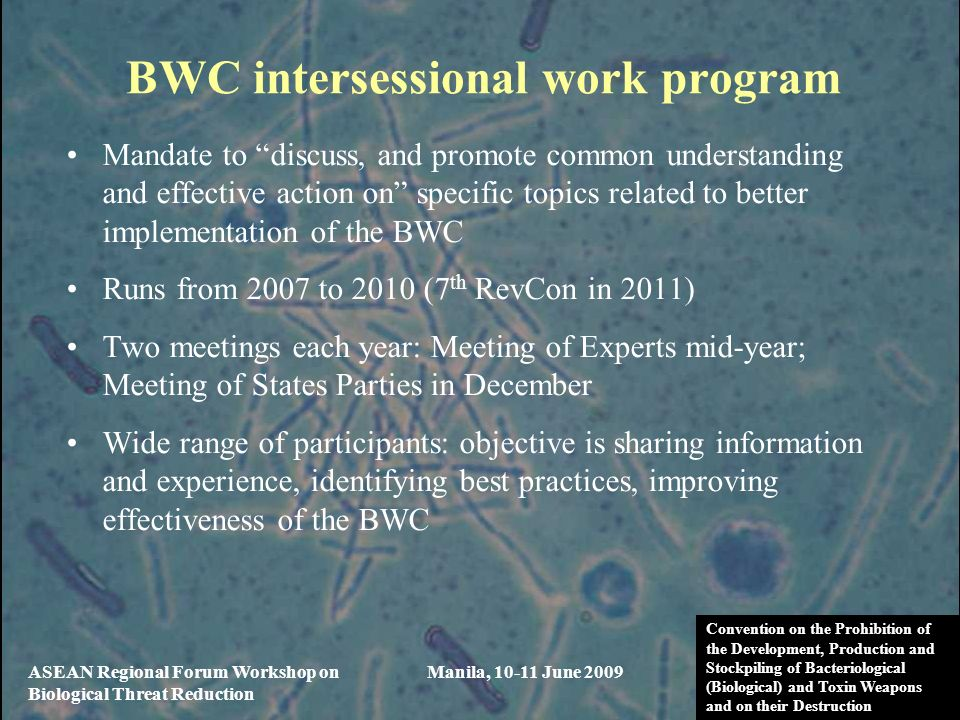 BWC intersessional work program