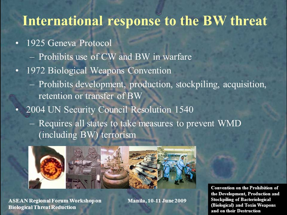 International response to the BW threat