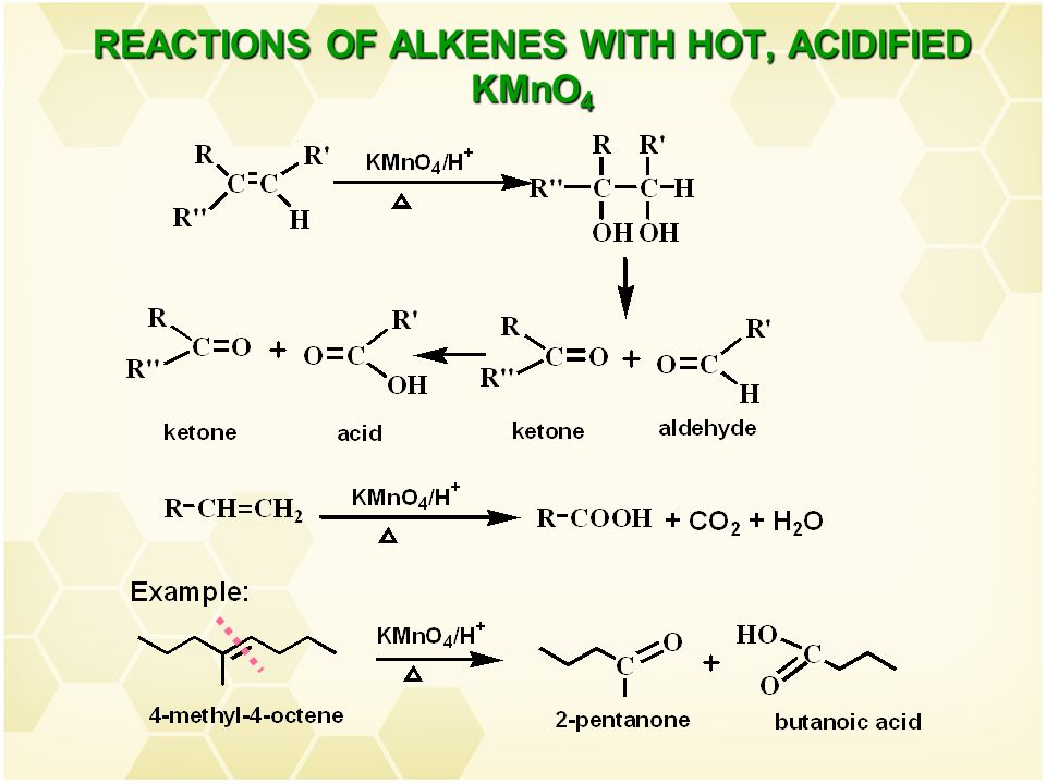 Organic Chemistry Chm 207 Chapter 3 Alkenes Nor