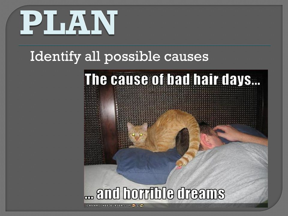 PLAN Identify all possible causes