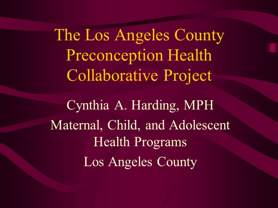 The Los Angeles County Preconception Health Collaborative Project