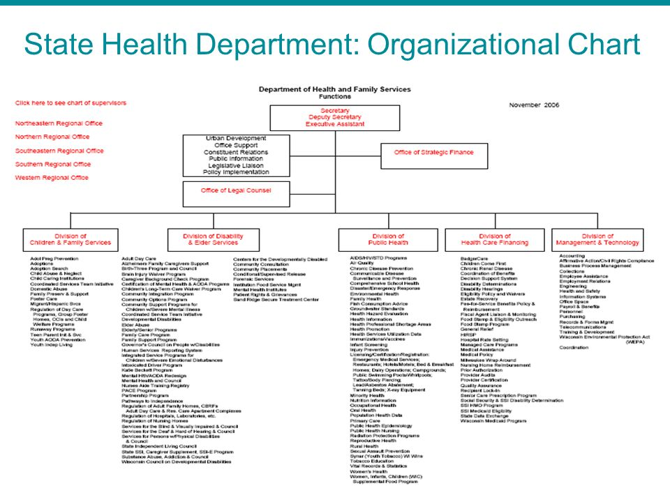 State Health Department: Organizational Chart