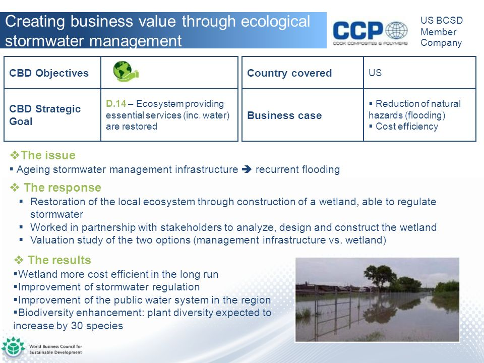 Creating business value through ecological stormwater management
