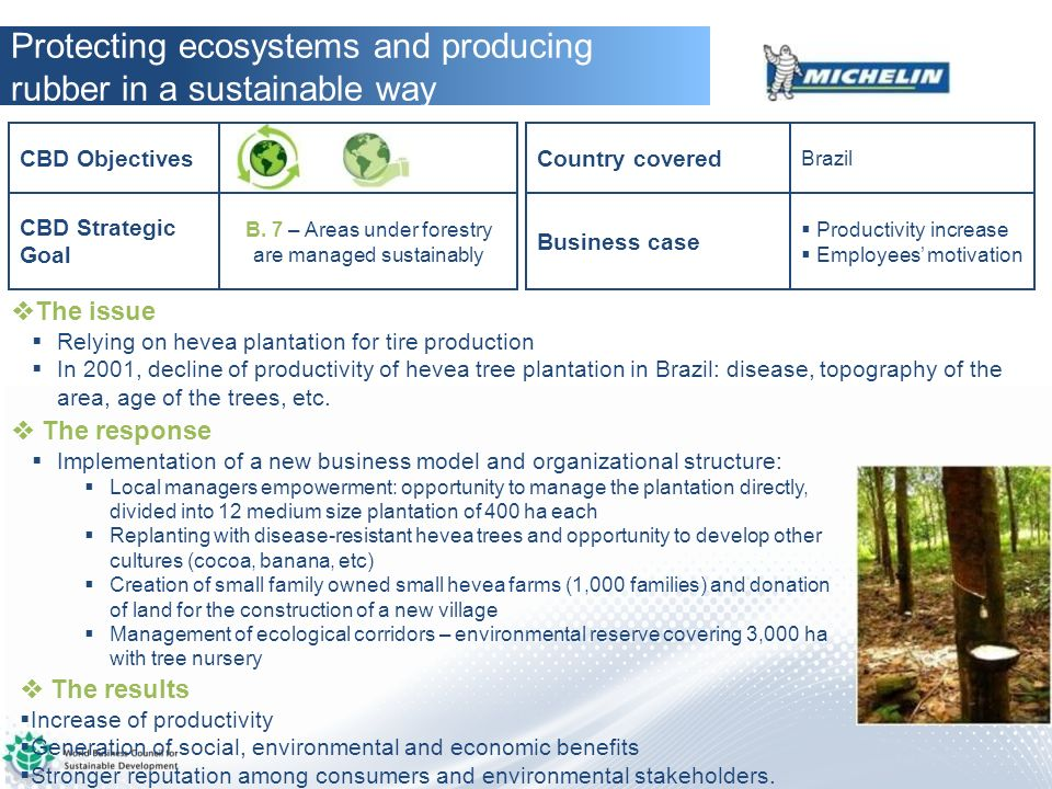 B. 7 – Areas under forestry are managed sustainably