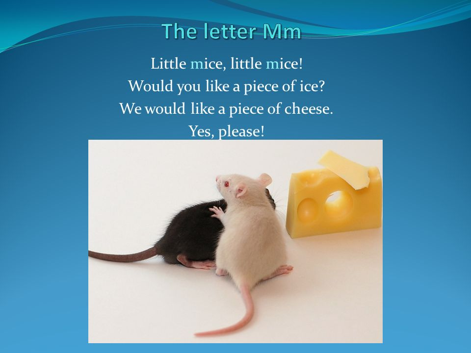 The letter Mm Little mice, little mice! Would you like a piece of ice