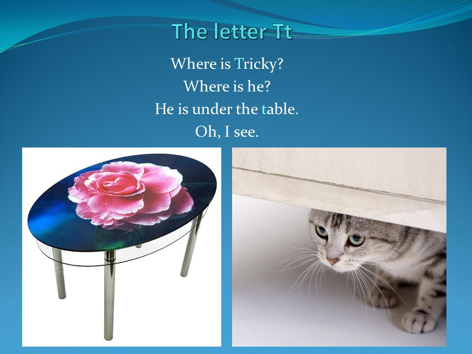 Where is Tricky Where is he He is under the table. Oh, I see.