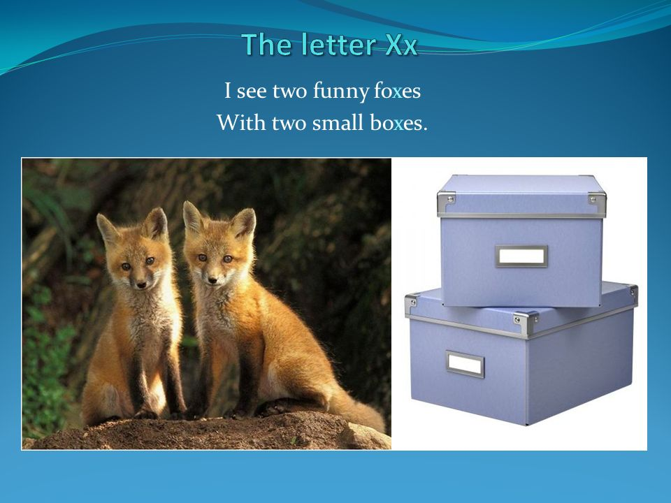 I see two funny foxes With two small boxes.