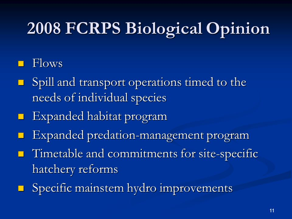 2008 FCRPS Biological Opinion