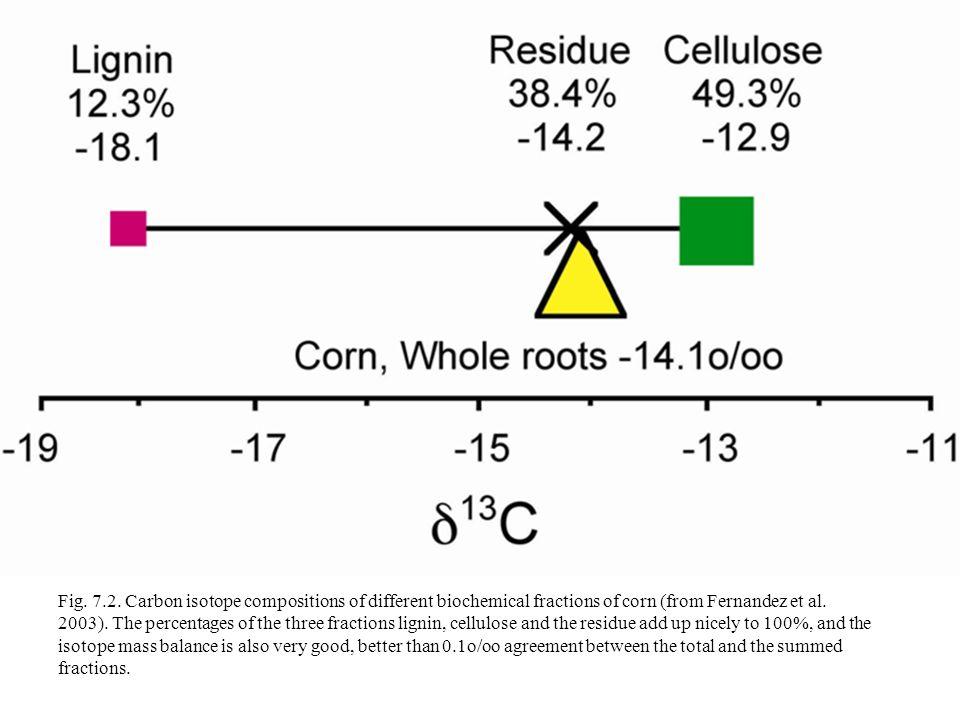 Radio carbon dating diagramming