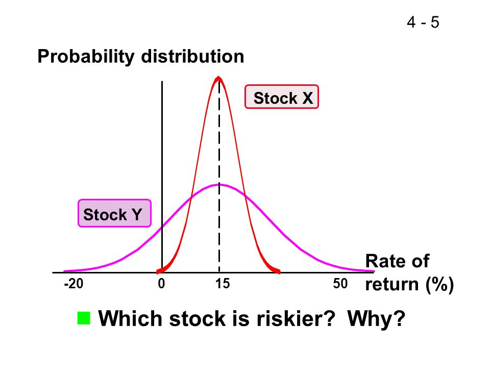 Which stock is riskier Why